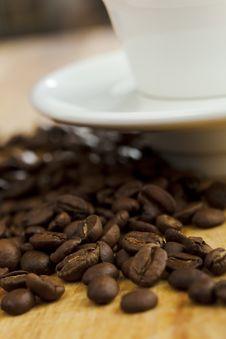 Free Coffee Beans Stock Photo - 8429800