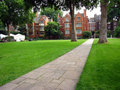 Free London Park And Apartment Buildings Stock Images - 8432824