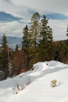 Free A Winter In Beskidy Mountains Royalty Free Stock Photography - 8431207