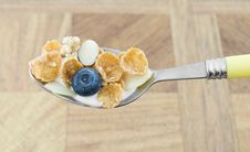 Free Cereal Royalty Free Stock Photography - 8432257