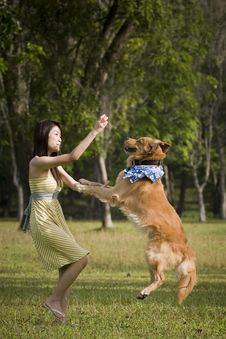 Free Girl With Dog Playing Outdoor Royalty Free Stock Photo - 8433815