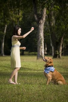 Free Girl With Dog Playing Outdoor Stock Image - 8433821