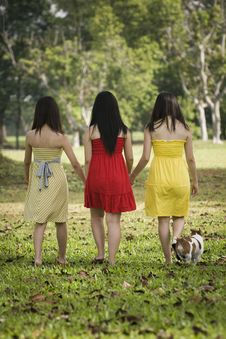 Free Girlfriends Outdoor In The Park Stock Images - 8433964