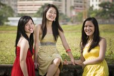 Free Girlfriends Outdoor In The Park Stock Photos - 8433993