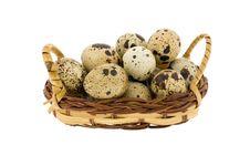 Free Crude Eggs Stock Photo - 8434260