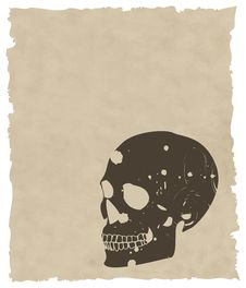 Free The Brown Vector Grunge Skull On Old Paper Royalty Free Stock Photography - 8435367