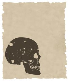 Free The Brown Vector Grunge Skull On Old Paper Royalty Free Stock Photos - 8435448