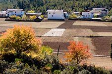 Free Village At Autumn Stock Photography - 8435602