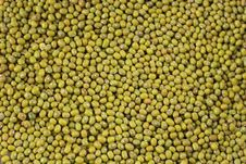 Free Grean Beans Texture Stock Photos - 8436283