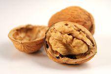 Free Walnuts Royalty Free Stock Image - 8436346