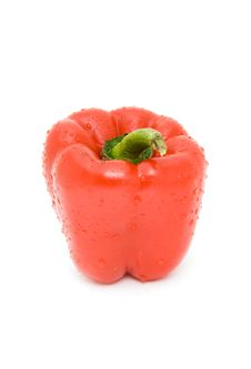 Free Pepper Stock Image - 8436561