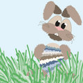 Free Happy Fluffy Pastel Easter Bunny Royalty Free Stock Image - 8444006