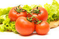 Free Fresh Tomatoes Isolated Royalty Free Stock Photos - 8444698