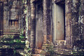 Free Angkor Wat (Bayon Temple) Stock Photo - 8449450