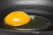 Free Raw Egg In Pan Royalty Free Stock Photos - 8440058
