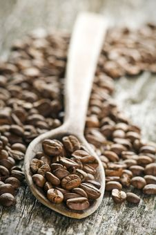 Free Coffee Stock Images - 8440164