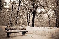 Free Bench Royalty Free Stock Photo - 8440435