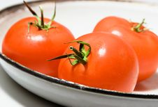 Free Three Tomatoes On A Plate Royalty Free Stock Photo - 8440445