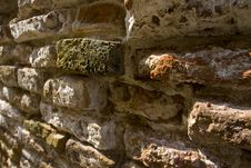 Free Green Brick In A A Wall Stock Images - 8440594