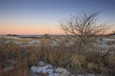 Free Snowy Sand Dunes At Sunrise Stock Photos - 8440753
