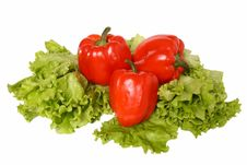 Free Red Pepper On Salad Stock Image - 8440841