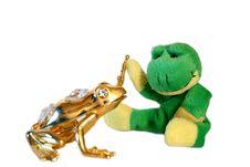 Free Fun Frog Series Stock Images - 8442344