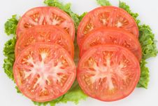Free Tomato Slices On Green Royalty Free Stock Photography - 8442827