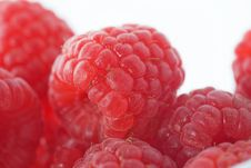 Free Macro Of Raspberries Royalty Free Stock Images - 8442939