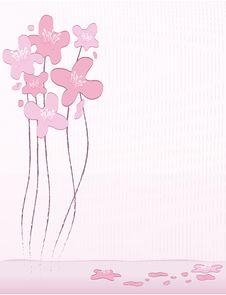 Free Cherry Blossom Background Royalty Free Stock Photo - 8443075