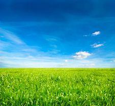Free Idyllic Landscape Stock Photo - 8443430