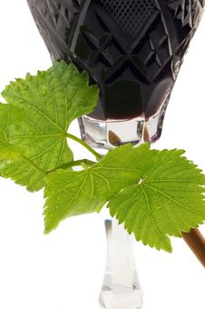 Free Wine And Vine Royalty Free Stock Photography - 8444227