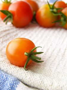 Free Tiny Tomatoes Stock Photography - 8444392