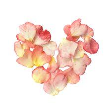 Free Rose Petal Heart Royalty Free Stock Photography - 8444457