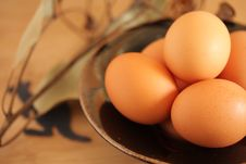 Eggs From Australia Stock Images