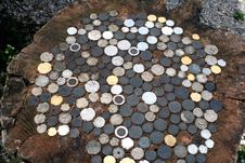 Free Coins On A Stump Stock Photography - 8449252