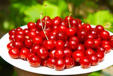 Free Tasty Cherry Royalty Free Stock Photography - 8449487