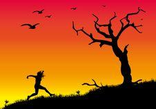Free Dead Tree 2 Stock Image - 8451481