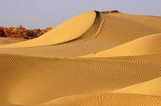 Free Desert Stock Image - 8451691
