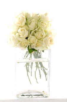 Free Rose Royalty Free Stock Photo - 8453065