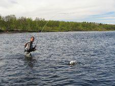 Free Fly Fishing Stock Photo - 8453270