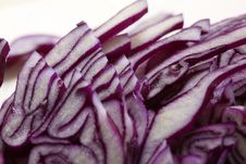 Free Red Cabbage Royalty Free Stock Photos - 8454658
