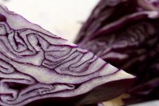 Free Red Cabbage Stock Photos - 8454663
