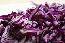 Free Red Cabbage Stock Photography - 8454672