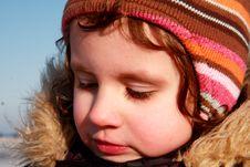 Free Sunny Day Royalty Free Stock Photos - 8456388