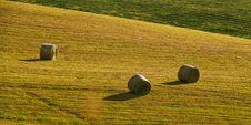 Three Bals Of Hay Stock Photography