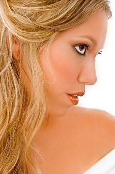 Free Close View Of Glamorous Model Royalty Free Stock Photos - 8457328