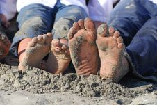 Free Sandy Toes Royalty Free Stock Photos - 8457998