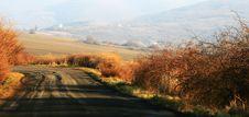Free Rural Road Stock Images - 8458114