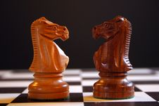 Chess Knights Stock Images