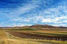 Free Bashang Grassland In Autumn, Good Harvest Royalty Free Stock Photo - 8459755